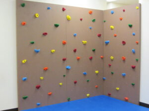 Rock wall in the main gym